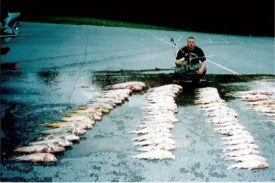 Bowfishing или рыбалка с луком / арбалет лук стрелы колчаны вы ...